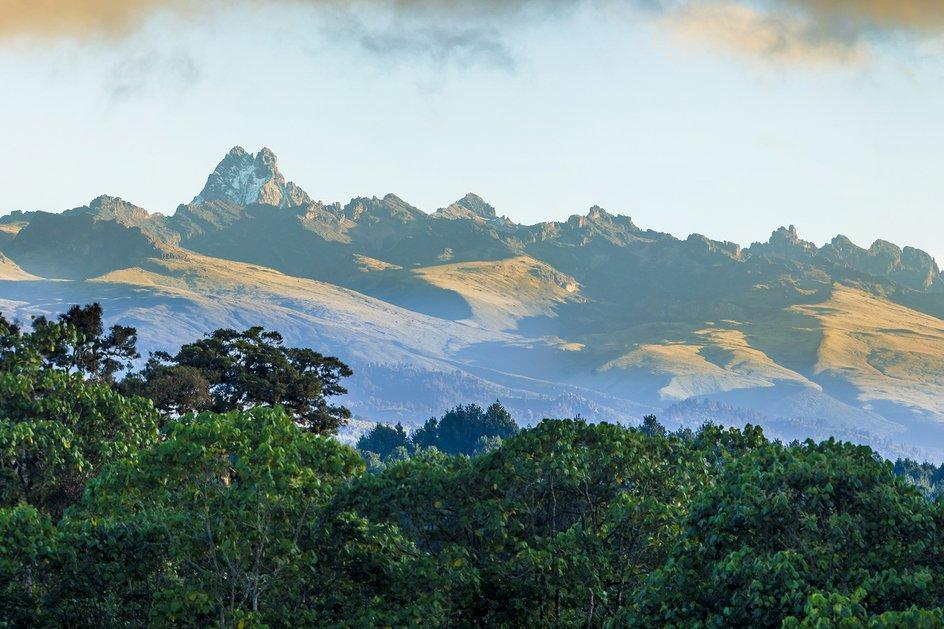 Kenya Gakurari AA by Ladro Roasting - image 0